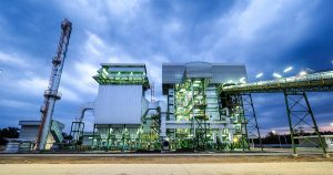 What is Biomass Energy - ESRC - Environmental Sustainability Resource Center